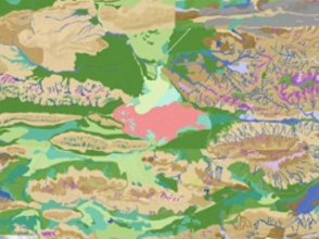 Consolidated Vegetation Mapping of Pilbara Tenements